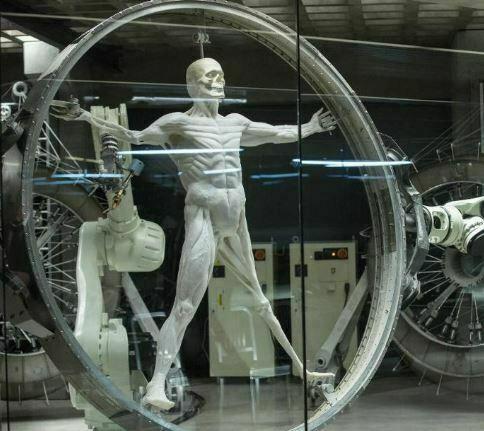 robot-humanoide-westworld