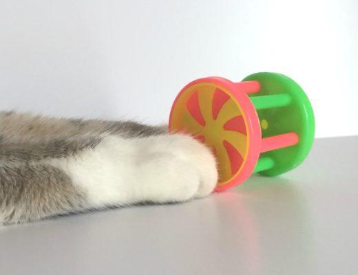 Jouet en plastique pour Chat