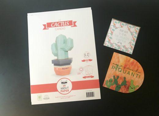 Agent Paper Cactus 3d
