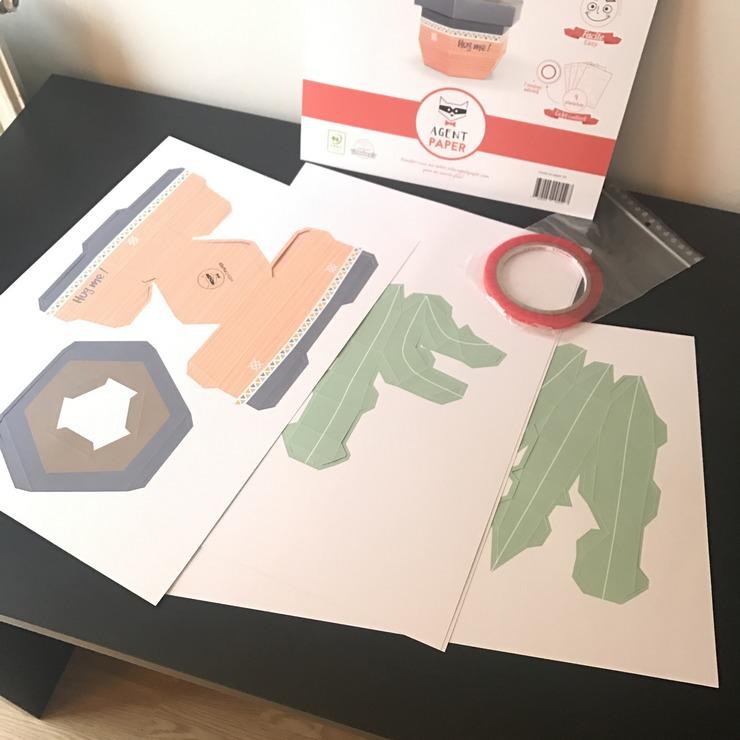 Montage du cactus candio deco Agent Paper
