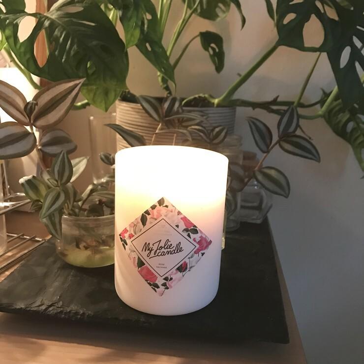 My Jolie Candle parfum rose sauvage