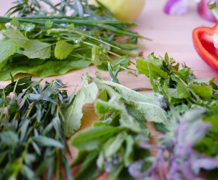 faire pousser epices et herbes aromatiques chez soi