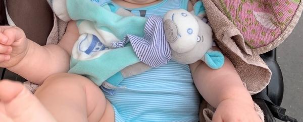 Doudou Âne Picotin de Baby Nat