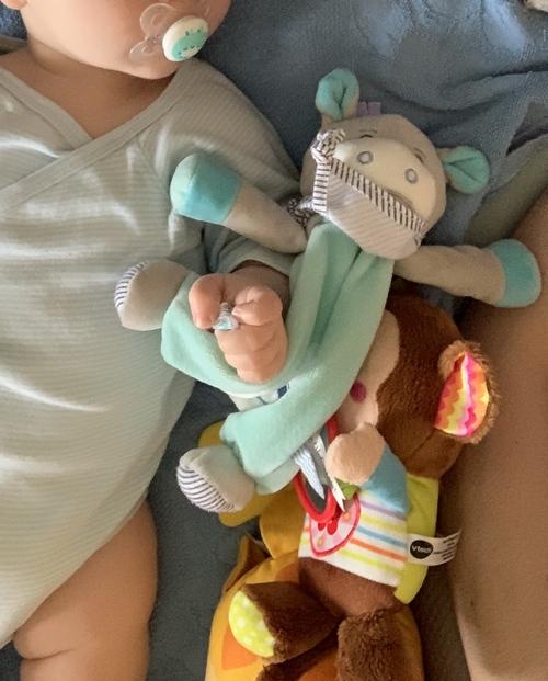 Noé le petit singe VTech et picotin l ane de Baby Nat