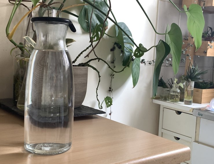 bouteille en verre au quotidien