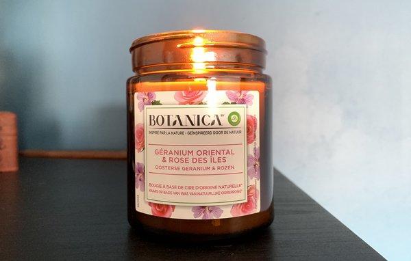 Bougies Botanica