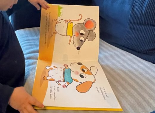 nouveaux livres pour un enfant de 2 ans et plus