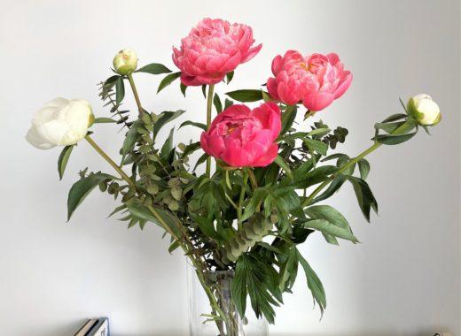 bouquet de fleurs fraiches pivoines roses et blanches