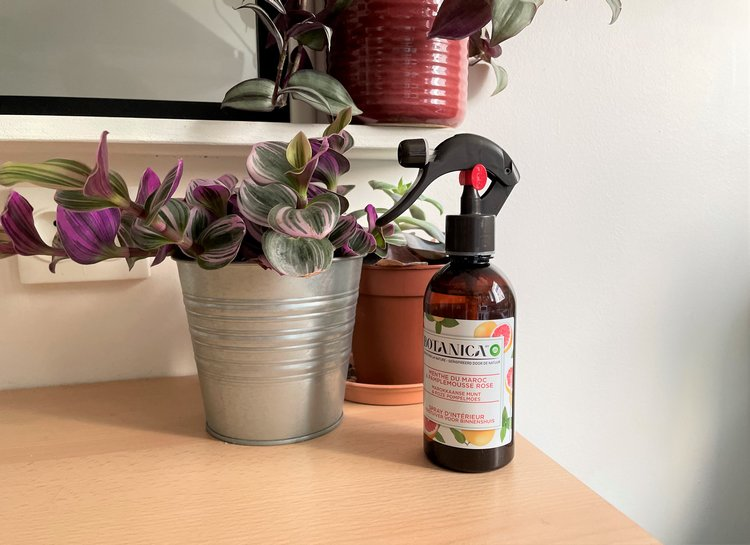 Spray d'intérieur Menthe du Maroc & Pamplemousse Rose Botanica