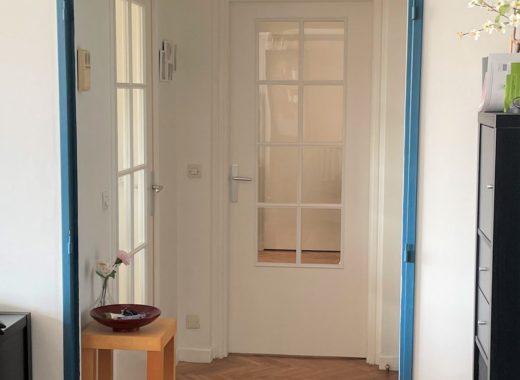 transformer une porte pleine en porte semi vitree